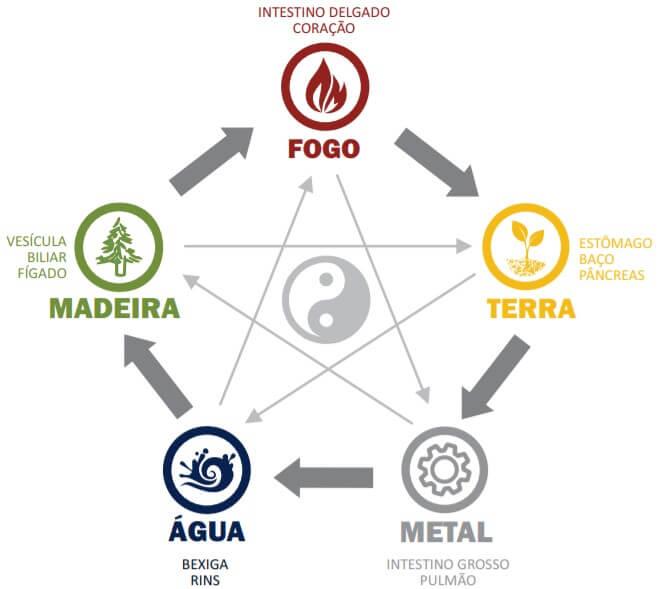 5 Elementos Cogumelo Ganoderma Lucidum