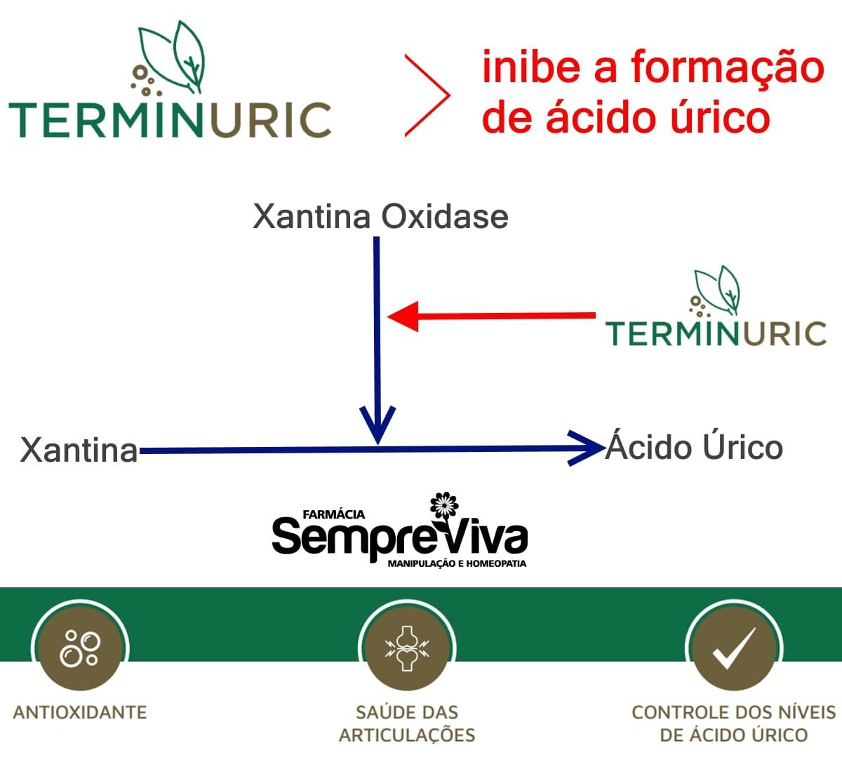 Terminuric